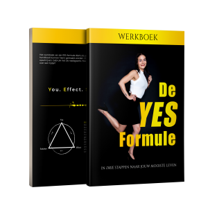 De YES-formule – Werkboek (E-Book)